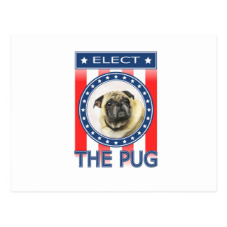 Elect The Pug Postcard