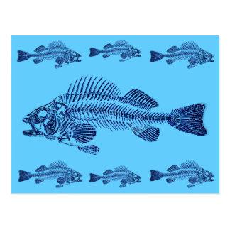 Electric Blue Fish Bones Postcard