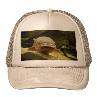 Electric catfish trucker hat