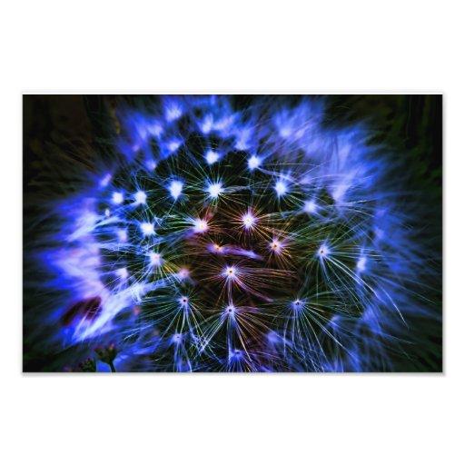 Electric Dandelion Art Photo