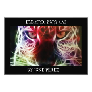 ELECTRIC FURY CAT PHOTO