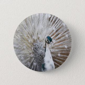 Elegant Albino Peacock 2 Inch Round Button