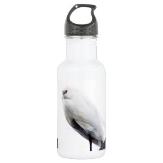 Elegant and Beautiful Snowy Egret