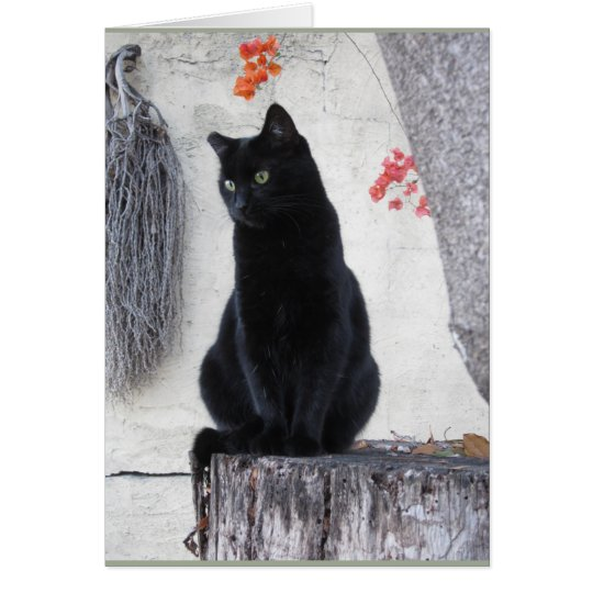 Elegant Black Cat With Orange Bougainvillea Card