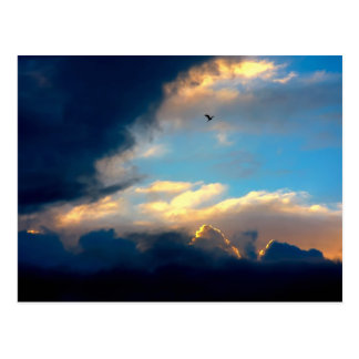Elegant Blue Sky Creamy Clouds Postcard
