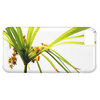 Elegant Botanical Pattern iPhone 5C Covers