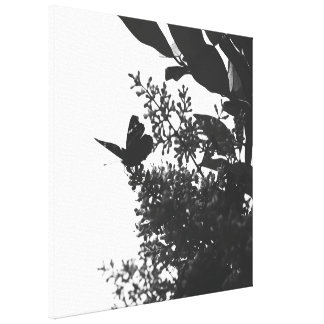 Elegant Butterfly in Black and White Stretched Canvas Prints