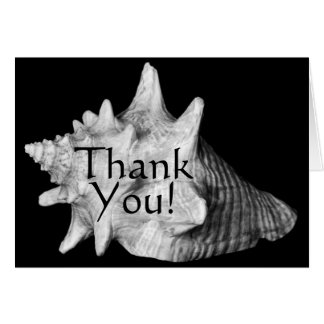 Elegant Conch Shell Beach Black, White Thank You Card