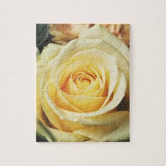 Elegant Cream Rose Jigsaw Puzzle