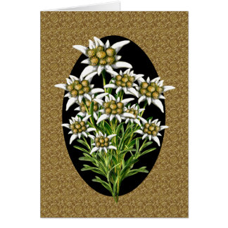 Elegant Edelweiss Flowers on Gold Custom Card