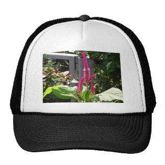 Elegant Home Garden Flower TEMPLATE Resellers FUN Mesh Hats