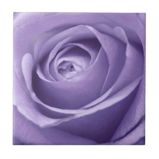 Elegant Lavender Rose Collection Tile