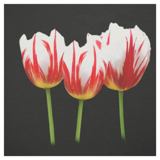 Elegant Maple Leaf Tulips Fabric