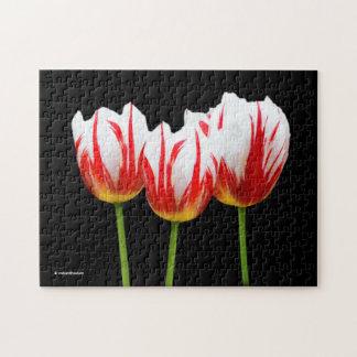 Elegant Maple Leaf Tulips Jigsaw Puzzle