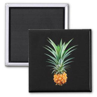 elegant minimalist pineapple | black background magnet