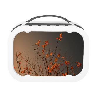 Elegant Modern Orange Leaves on Bush Lunch Box