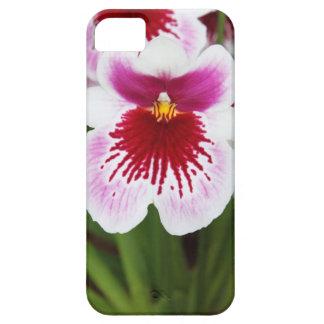 Elegant orchid iris graphic photo iPhone 5case iPhone 5 Case