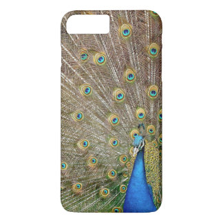 Elegant Peacock Feathers   Phone Case