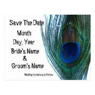 Elegant Peacock Save the Date Postcard