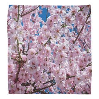 elegant pink cherry blossom tree photograph bandana