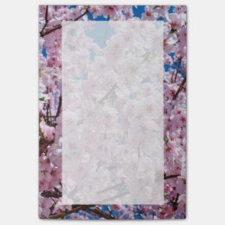 elegant pink cherry blossom tree photograph post-it notes