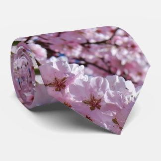 elegant pink cherry blossom tree photograph tie