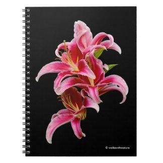 Elegant Pink Oriental Lilies Notebook