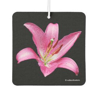 Elegant Pink Oriental Lily Lilium Stargazer Flower Air Freshener