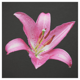 Elegant Pink Oriental Lily Lilium Stargazer Flower Fabric