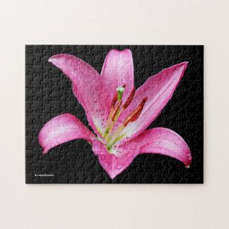 Elegant Pink Oriental Lily Lilium Stargazer Flower Jigsaw Puzzle