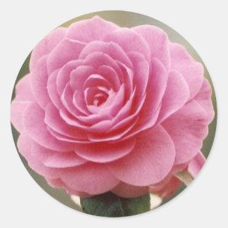 ELEGANT PINK ROSE CLASSIC ROUND STICKER
