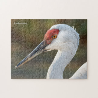 Elegant Profile of a Greater Sandhill Crane Jigsaw Puzzle