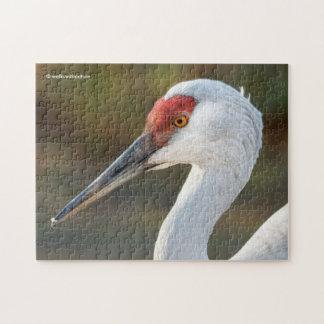 Elegant Profile of a Greater Sandhill Crane Puzzle