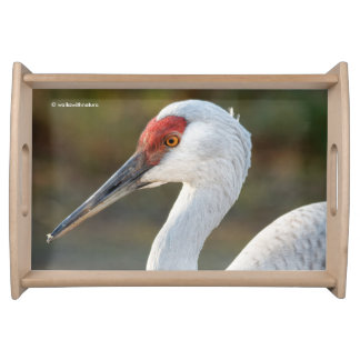 Elegant Profile of a Greater Sandhill Crane Serving Tray