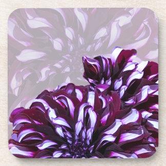 Elegant purple dahlia flower coaster