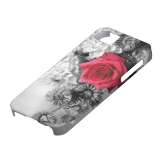 Elegant Red Rose with Black & White background iPhone 5 Covers