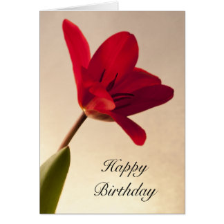 Elegant Red Tulip Birthday Card