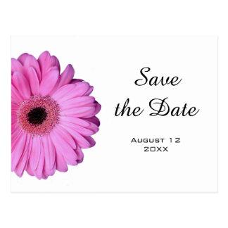 Elegant Romantic Pink Gerbera Daisy Postcard