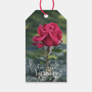 Elegant Rose Birthday Gift Tags Pack Of Gift Tags