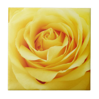 Elegant rose tile