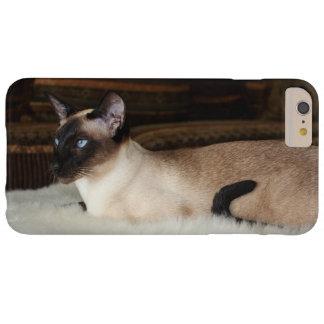 Elegant Siamese Cat Barely There iPhone 6 Plus Case