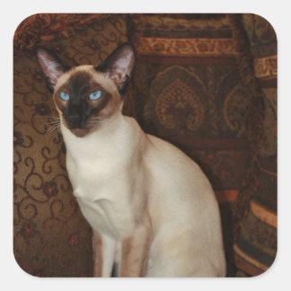 Elegant Siamese Cat Square Sticker