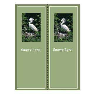 Elegant Snowy Egret Bookmark Postcard