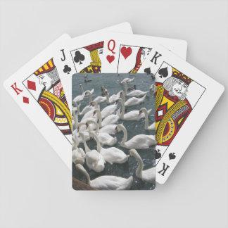 Elegant Swan Cards