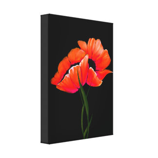 Elegant Tangerine Poppies on Black Canvas Stretched Canvas Print