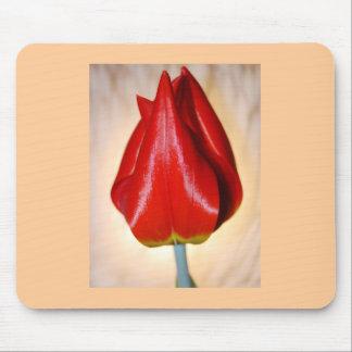 Elegant Tulip Mousepad
