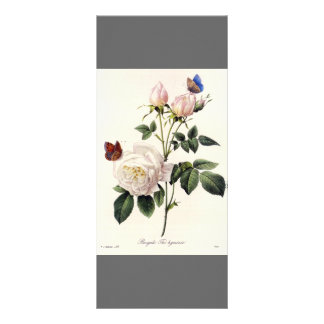 Elegant vintage botanical art grey bookmark rack card