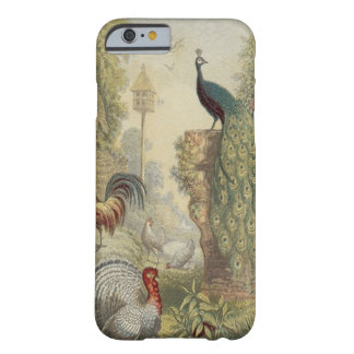 Elegant Vintage Peacock & Other Birds Barely There iPhone 6 Case