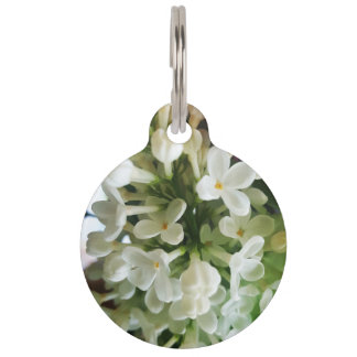 Elegant white lilac blossom photo pet tag
