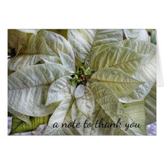 Elegant Winter White Poinsettia Thank You Note Card